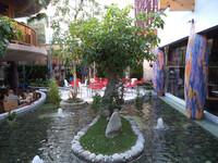 Cafe Venice