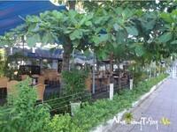 Cafe Vườn Dừa