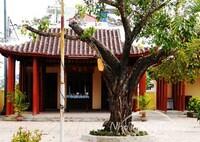 Miếu Thờ Trịnh Phong