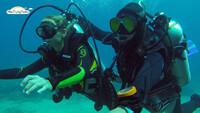 Phân Biệt Giữa Lặn Snorkeling Và Scuba Diving Nha Trang