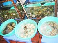 Quán hải sản Nhà Tôi