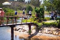 Suối (Đảo) Hoa Lan - Hòn Hèo
