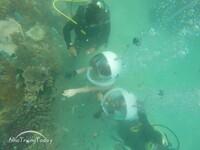 Tour đi bộ dưới biển Nha Trang [2020]