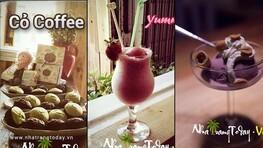 Cỏ Coffee Nha Trang