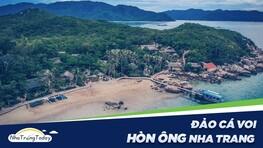 Hòn Ông (Đảo Cá Voi) - Vẻ Đẹp Hòn Đảo Thanh Bình Nhất Nha Trang