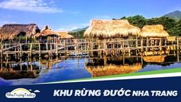 Khu Rừng Đước Nha Trang - Rừng Ngập Mặn Duy Nhất Ở Nha Trang