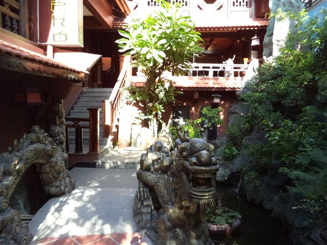 Cafe Rừng Trong Phố