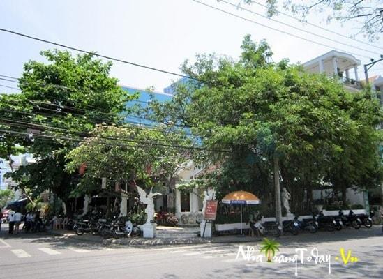 Cafe Tuổi Ngọc @