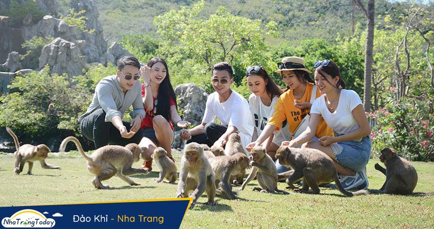 Khỉ Nha Trang thân thiện với khách
