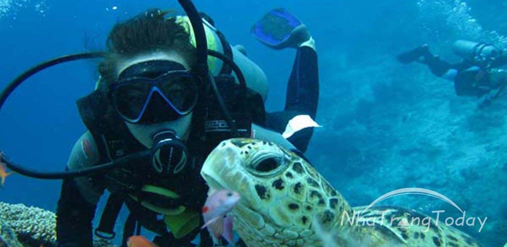 Lặn biển ngắm san hô và sinh vật biển