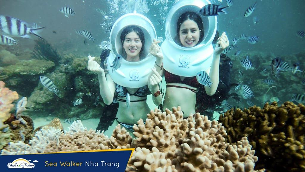 kinh nghiệm lặn biển ngắm san hô nha Trang
