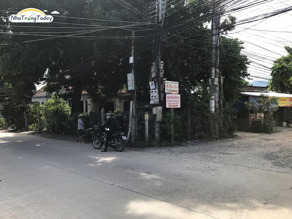 Đồng Xanh Quán