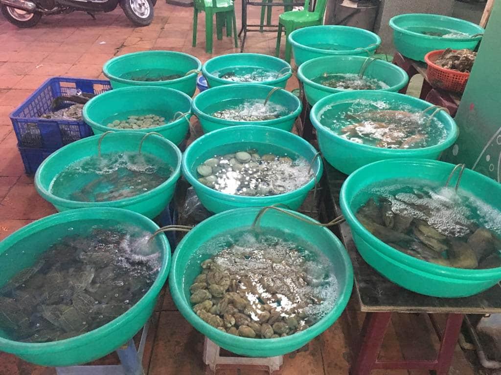 Hải sản Biển Hồng Lầu