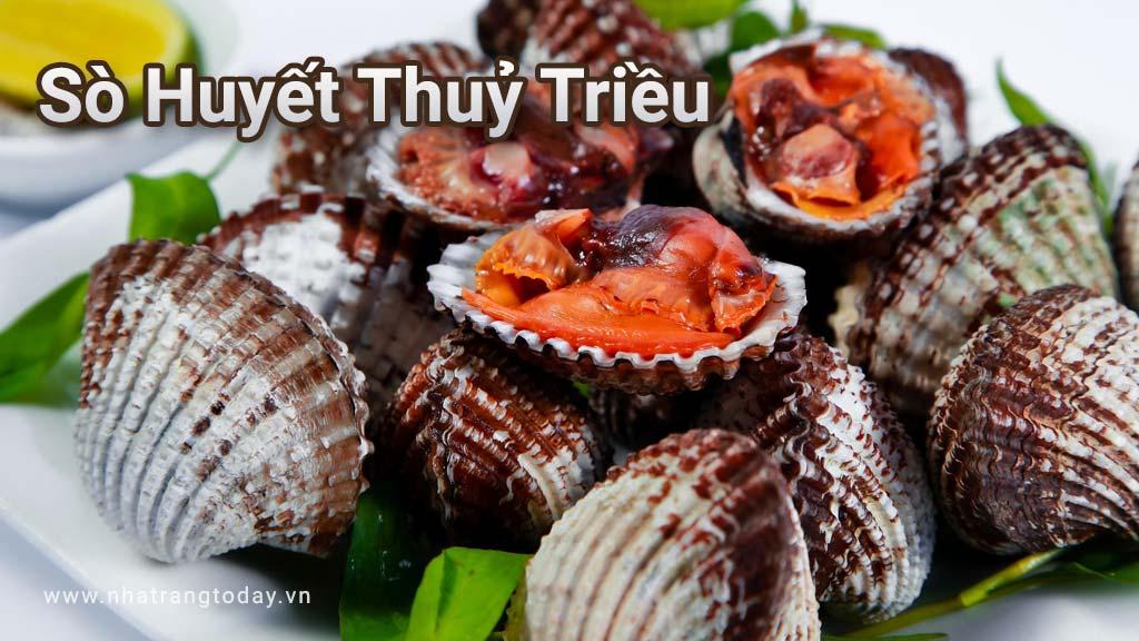 Sò huyết thủy triều Nha Trang