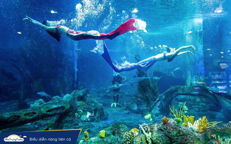 Biễu diễn nàng tiên cá Vinpearl Nha Trang